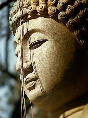 buddha_11