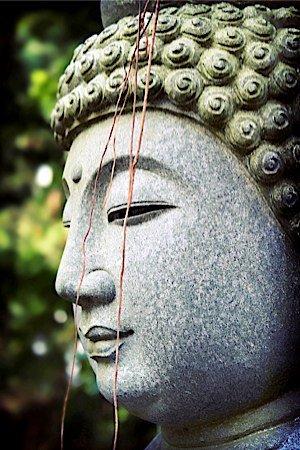 buddha_18