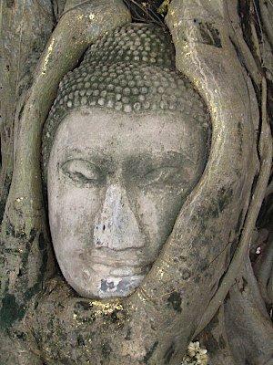 buddha_5